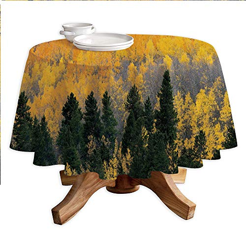 Fall Round Polyester Tablecloth,Colorful Aspen Forest in Colorado Rocky Mountains Western Wilderness USA Theme,Dining Room Kitchen Round Table Cover,42
