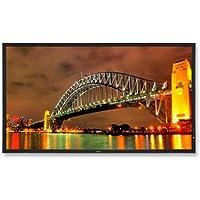 NEC MultiSync LED LCD Slim Monitor 40IN 1920X1080 3000:1 X401S