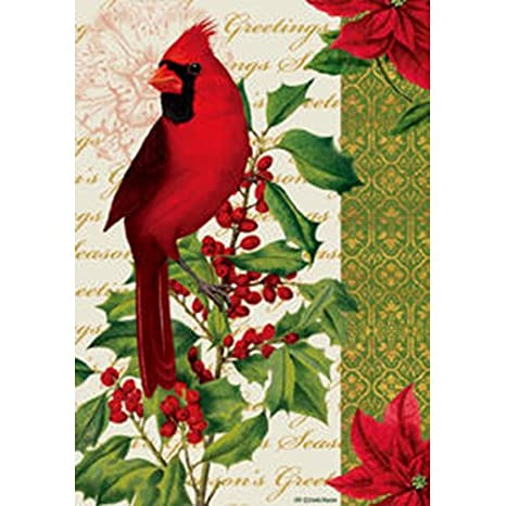 Amazon.com : Cardinal & Holly - 28 Inch By 40 Inch Large Decorative