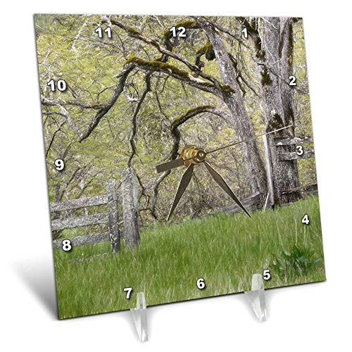 (3dRose Danita Delimont - Scenics - USA, Washington State. Abandoned Pasture. - 6x6 Desk Clock (dc_315105_1))