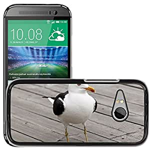 Cas Coq Case Cover // M00145885 Gaviota de aves Aves Fauna Ave Wings // HTC One Mini 2 / M8 MINI / (Not Fits M8)