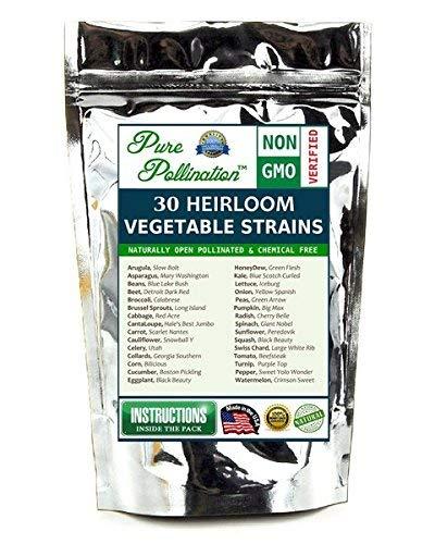 12,500 Seed 30 Vegetable/Fruit Variety Garden Pack Emergency Survival Kit Food (Fruit Vegetable Seeds)