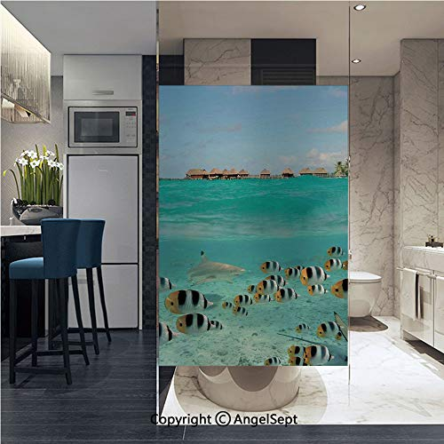 - AngelSept Window Film Door Sticker Glass Film Blacktip Reef Shark Chasing Butterfly Fish Lagoon of Bora Bora Tahiti Both Suitable for Home and Office, 22.8 x 35.4 inch,Aqua Yellow and Black