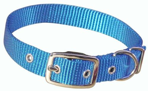 "Hamilton 3/4"" Single Thick Nylon Deluxe Dog Collar, 16"", Berry Blue"