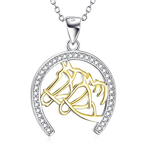 YFN Sterling Horseshoe Zirconia Necklace
