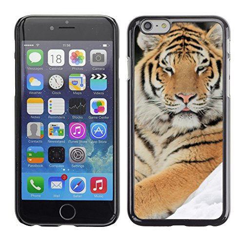 Premio Sottile Slim Cassa Custodia Case Cover Shell // V00003622 tigre majestueux // Apple iPhone 6 6S 6G 4.7""