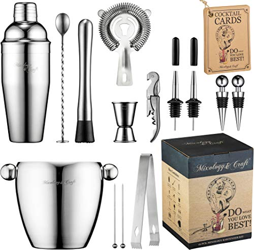 Bar Set 16-Piece Mixology Bartender Kit - Cocktail