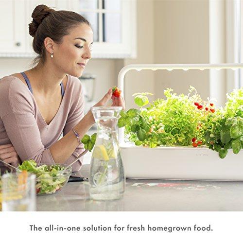 Click & Grow Smart Garden 9 Indoor Gardening Kit (Includes Plant Capsules), Gray