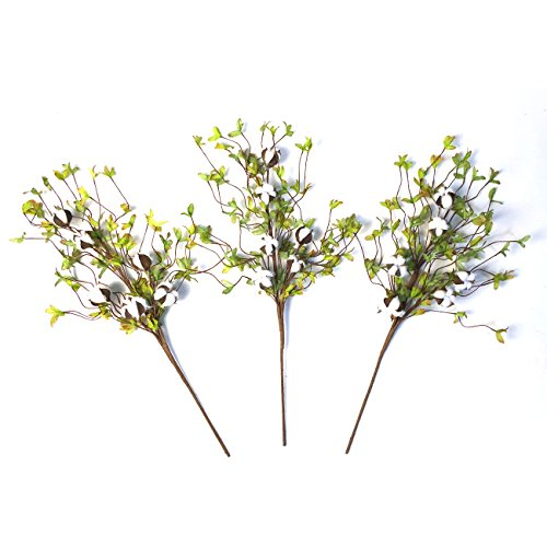 Cotton Stems - 26 Tall Real Elastic Cotton Stalk Rustic Floral with Artificial Green Leaves for Wall or Desk Decor, Wedding Centerpiece (Pack of 3)