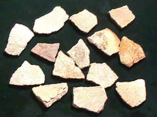 Dinosaur Eggshell Fragments # 98 (Fossil Dinosaur Eggs)