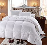 Twin Size White Goose Down Comforter Duvet Insert Quilted Comforter Box Stitched Fluffy 60% Natural Goose Down 100% Cotton Cover Lightweight Blanket All Season (Twin)