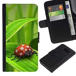 Billetera de Cuero Caso Titular de la tarjeta Carcasa Funda para Samsung Galaxy S6 SM-G920 / Ladybug Green Leaf / STRONG