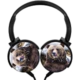 LKJ007 brown-bear-eating 3D Printing Portable Stereo Over Head headset