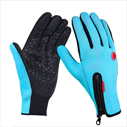 Asdf Touchscreen Gloves Winter Warm Tech Glove for Smart Phone Texting with Non-Slip Silicone Gel - Thermal Cotton - Windproof for Running (Color : Blue)