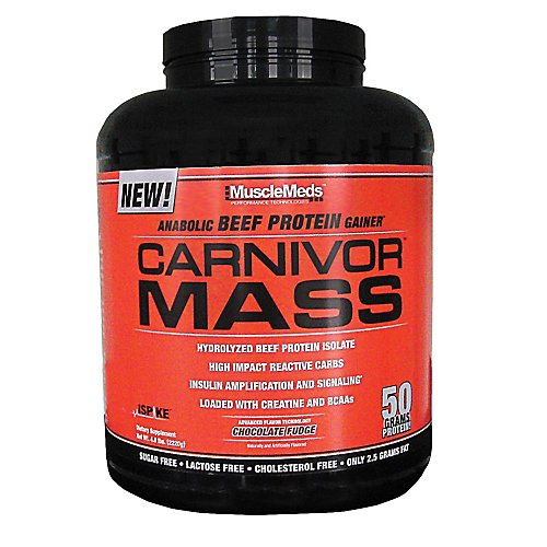 best beef protein powder