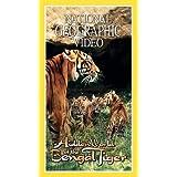 Nat'l Geo: Bengal Tiger