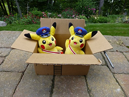 pikachu_box