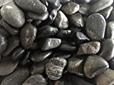 Maximumstore 10Lb Decorative Polished Pebbles/River Rocks/Aquarium Gravel (Large Black 10 lb)