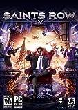 Saints Row IV PC