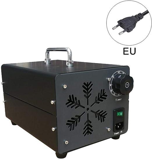 Generador comercial Generador de ozono Purificador de aire 10000 ...