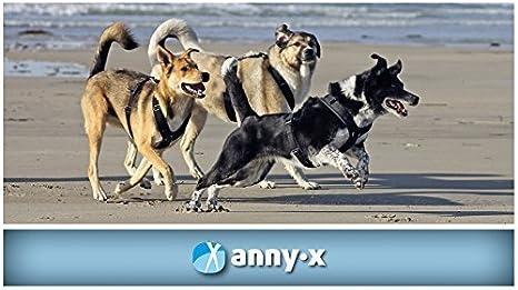 annyx Pechera Fun S Color Bitte por email: Amazon.es: Productos ...