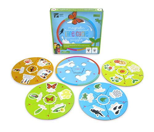 American Educational Products MAG-203 Magnetic Lifecycle Puzzle Activity -