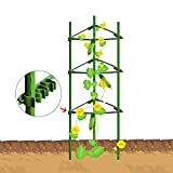 EcoTrellis Tomato Cages,Plant Cage, Sturdy And Durable,3-Feet High?2 Pack,Triangular,Standard