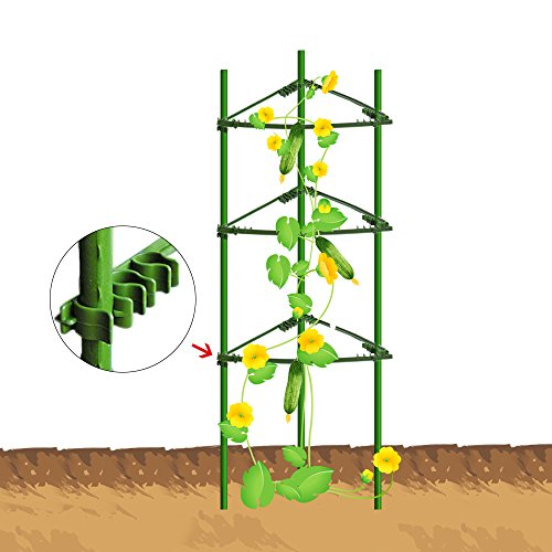 EcoTrellis Tomato Cages,Plant Cage, Sturdy And Durable,3-Feet High?2 Pack,Triangular,Standard by EcoTrellis