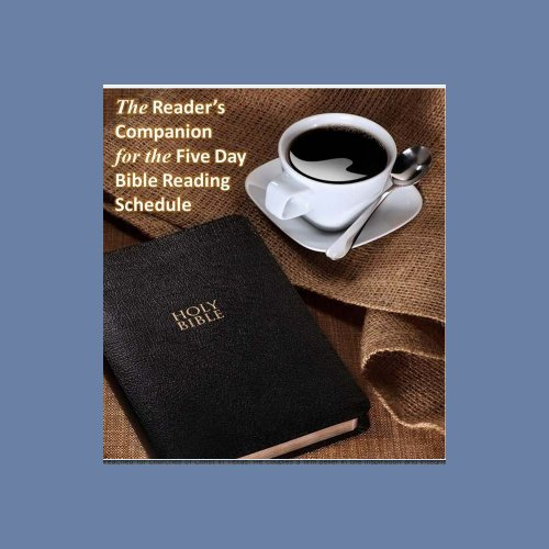 A Reader's Companion to the Five Day Bible Reading Schedule: Read, understand and apply the Bible in (Bedford Five Light)