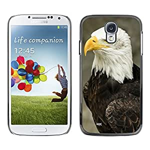 Super Stella Slim PC Hard Case Cover Skin Armor Shell Protection // M00146561 Bald Eagle Bird Predator Feathered // Samsung Galaxy S4 S IV SIV i9500