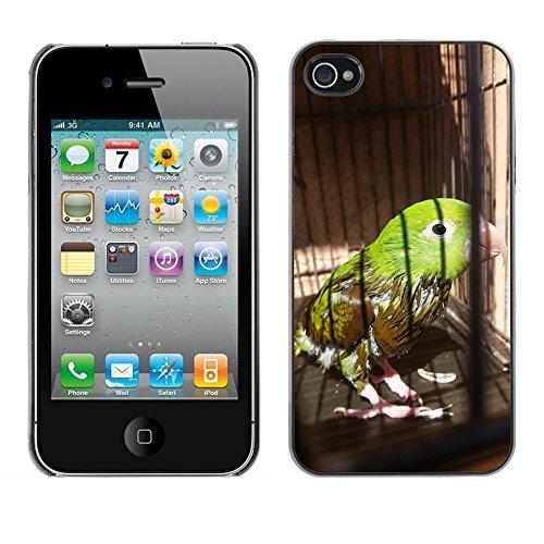 Bild Hart Handy Schwarz Schutz Case Cover Schale Etui // M00134485 Vogel Parakeet Grün // Apple iPhone 4 4S 4G