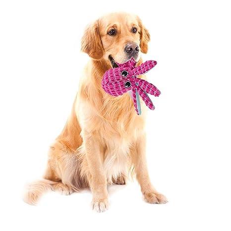 cliff.l Juguete para Mascotas - Juguete de Limpieza para ...