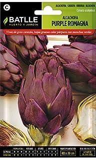 Semillas Fitó 1310 - Semillas de Alcachofa Talpiot: Amazon.es: Jardín