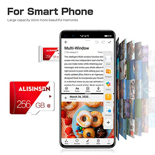 256GB Micro SD Card High Speed TF Card Class 10 Micro Memory Card for Android Smart-Phones,PC&Camera with SD Card Adapter(256GB)