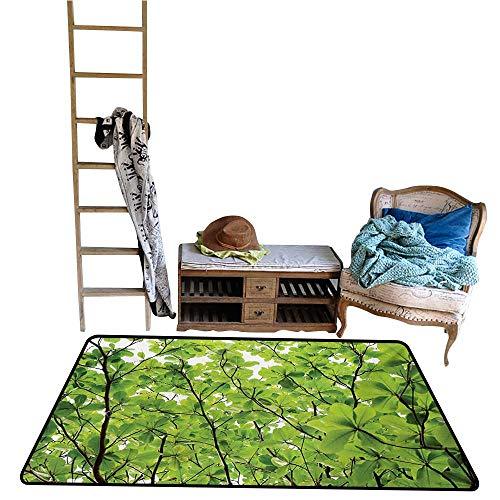 Custom Pattern Floor mat,Close-up Tree Leaves from an Uprising Angle High Plants Summer Fresh Environment Habitat 55
