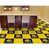 Iowa Hawkeyes NCAA Team Logo Carpet Tiles