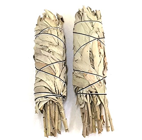 White Sage Smudge Stick 2-Pack - incensecentral.us