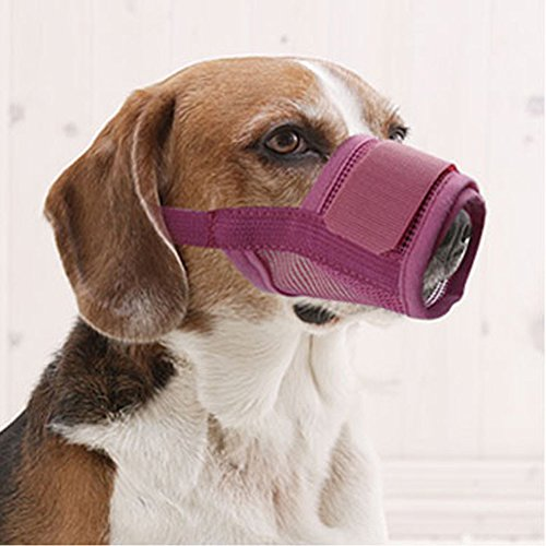 Petmuch Adjustable Nylon Grooming Muzzle