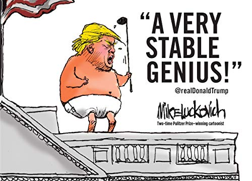 Book Cover: A Very Stable Genius