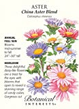 Botanical Interests, Seeds Aster China Blend