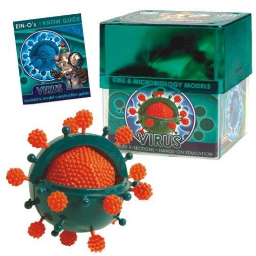 CELL MODEL - VIRUS