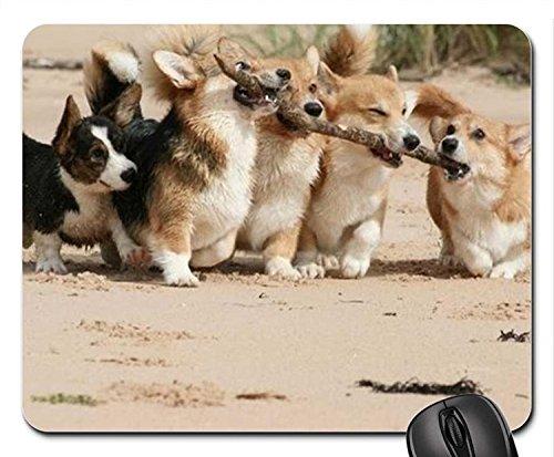 Echonie Puppies Corgi Mouse Pad, Mousepad (Dogs Mouse Pad) ()