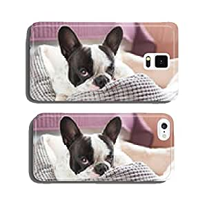 Adorable french bulldog on the lair cell phone cover case Samsung S5