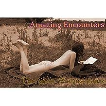 Amazing Encounters: 100 short (romantic) stories