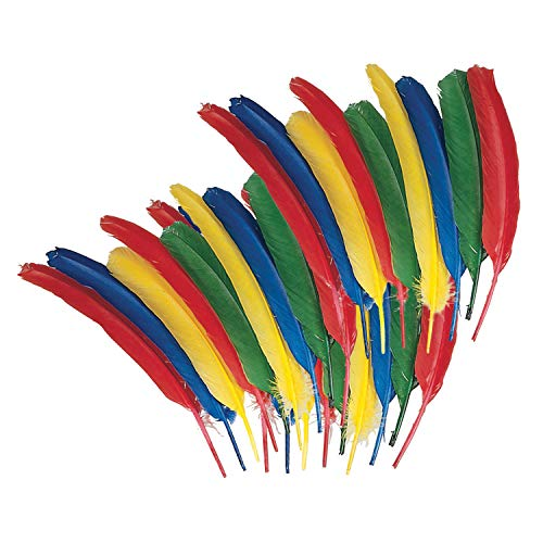 Chenille Kraft CK-4503 Quill Feathers Assortment Bag, 0.7