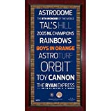 HOUSTON ASTROS GAME USED MINUTE MAID PARK MLB DIRT PLAQUE WALL ART SUBWAY SIGN