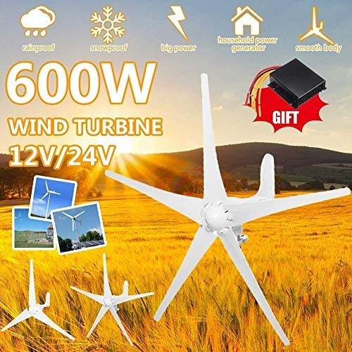 CTO 600W 12V / 24V Wind-Turbinen-Generator 5 Blades Horizontal Windgenerator mit Controller-Windmühle Energieturbinen Charge (Spannung: 24 V),24V