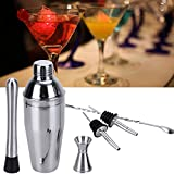 Best None Cocktail Shakers - BrotheWiz Cocktail Shaker Set Cocktail Shaker Bar Set Review
