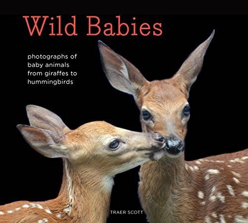 aphs of Baby Animals from Giraffes to Hummingbirds ()