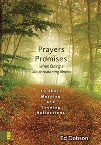 Oraciones y promesas: 30 reflexiones breves para mañana y tarde (Spanish Edition)